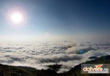 Sông mây bồng bềnh trên đỉnh núi Chiêu Lầu Thi