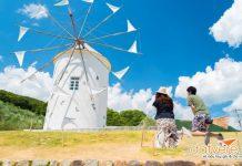 Khám phá hòn đảo Shodoshima với những ngôi nhà cối xay gió
