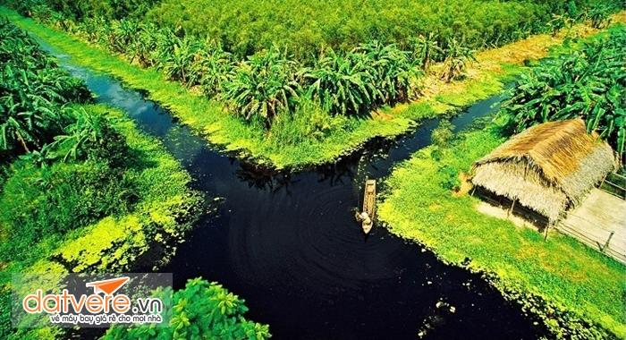 Rừng U Minh Hạ nhìn từ trên cao