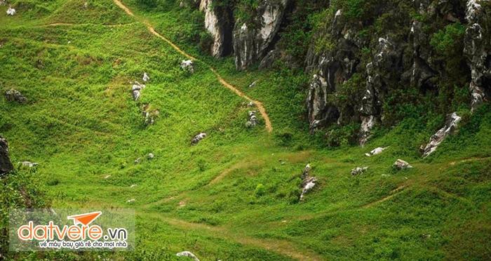 Thung lũng cỏ xanh mướt dưới chân núi