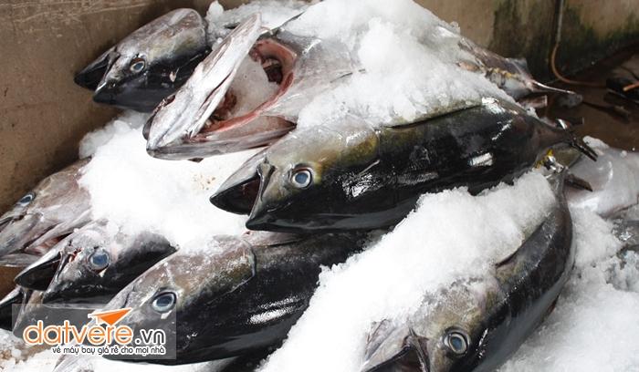 Các loại hải sản tươi sống phải đóng gói cẩn thận