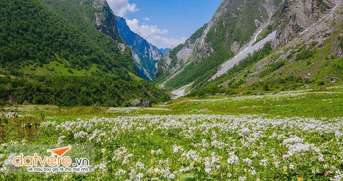Vườn quốc gia thung lũng các loài hoa là điểm đến hấp dẫn du khách