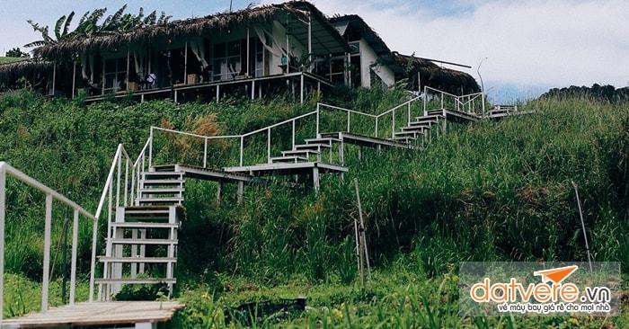 The Wilder Nest