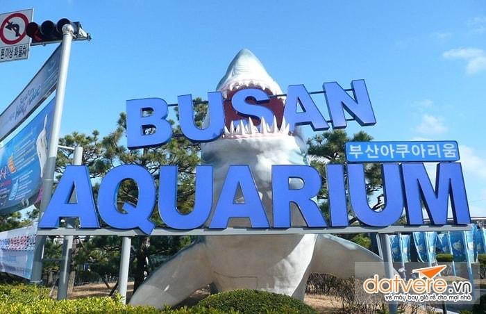 Thành phố du lịch Pusan Hàn Quốc