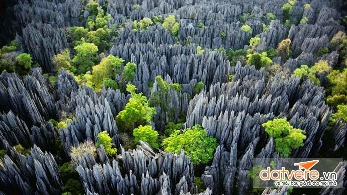 Forest Tsingy, Madagascar