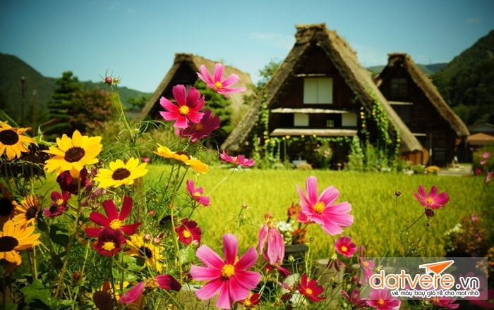 Shirakawa-go trở nên rất thơ mộng giữa núi rừng