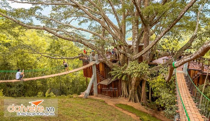 Quán cà phê trên cây