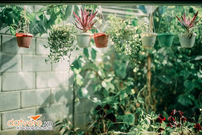 Homestay Mosaic Garden
