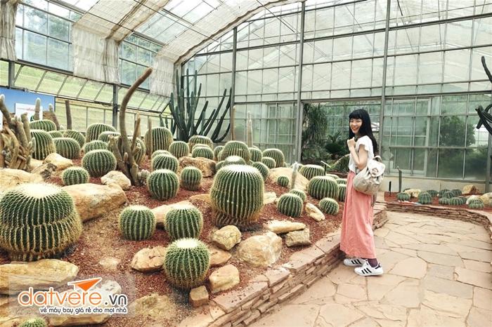 Vườn thực vật Queen Sirikit