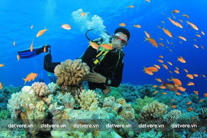 Lặn biển là hoạt động được yêu thích tại Manila