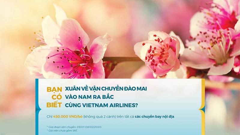 Dịch vụ vận chuyển đào, mai đón Tết 2020 từ các hãng hàng không Việt